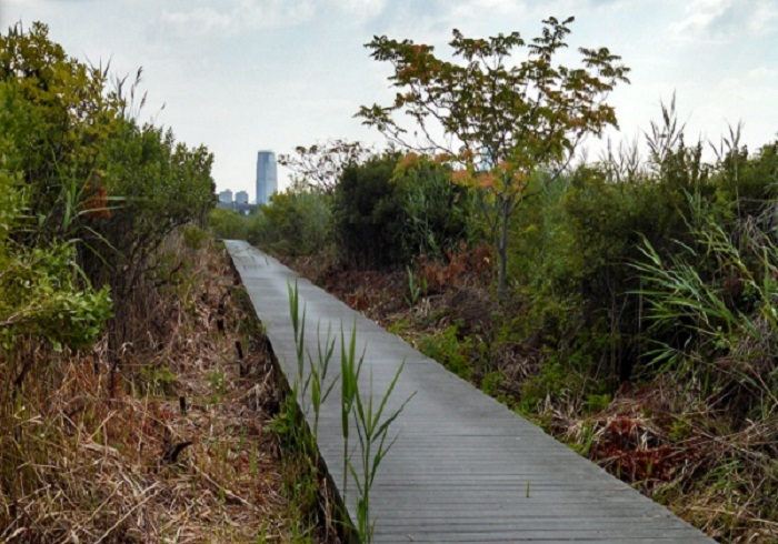 First Day Hike at Liberty State Park