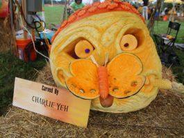 The Amazing Pumpkin Carve
