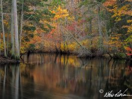 NJ's Pinelands National Reserve, A Discussion