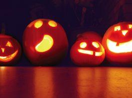 Halloween! Trick or Treat!