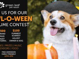 Free Event! Doggie Halloween Costume Contest - Cash Prizes!