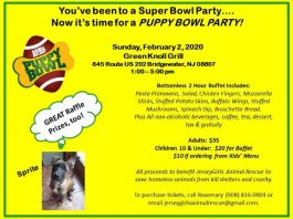 Jersey Girls Animal Rescue Puppy Bowl Party