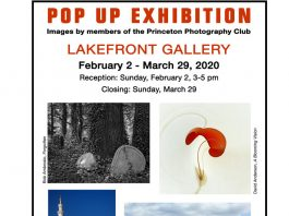 Pop Up Exhibit at Lakefront Gallery