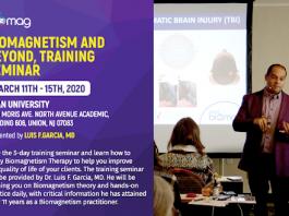 Biomagnetism and Beyond, Training Seminar Mar 11th-15th, 2020