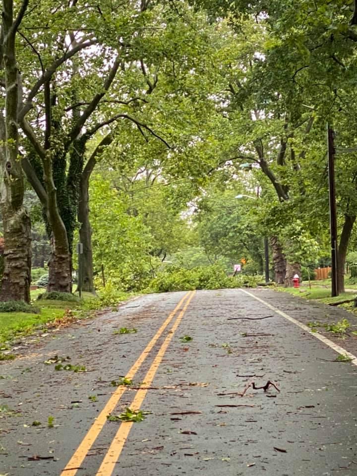 Photo courtesy of Princeton Police Department