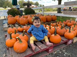 PHOTOS COURTESY OF TERHUNE ORCHARDS